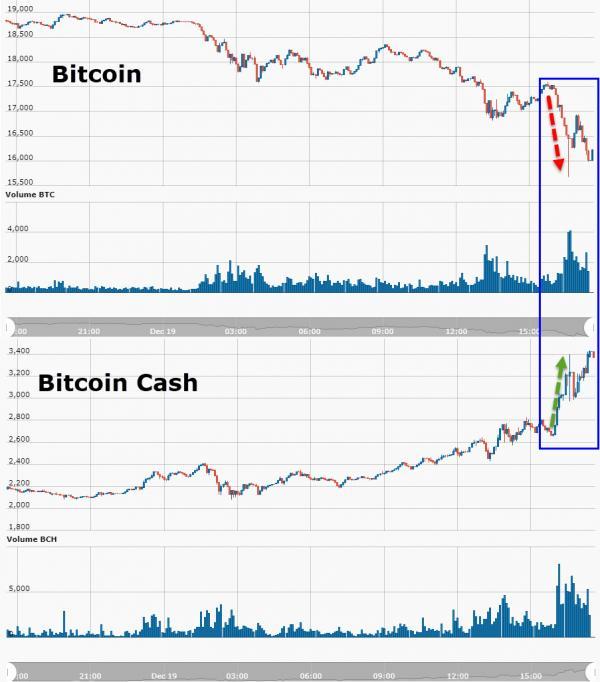 Mentre Bitcoin scende, Bitcoin Cash sale (+50% in un giorno)!