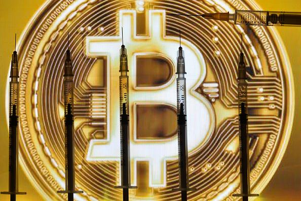 JP Morgan si appresta a lanciare paniere di 11 titoli bitcoin, tesla grande esclusa