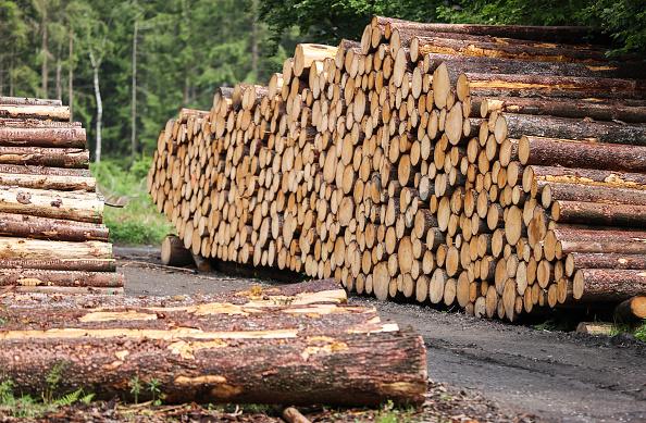 Forte ritracciamento dei futures sul legname Usa. Segnale di alert per il mercato immobiliare Usa?